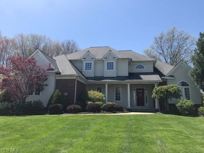 7534 Hunting Lake Drive, Concord, OH 44077 - #: 4088015