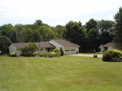 13065 Old State Rd, Claridon, OH 44046 - #: 4088031