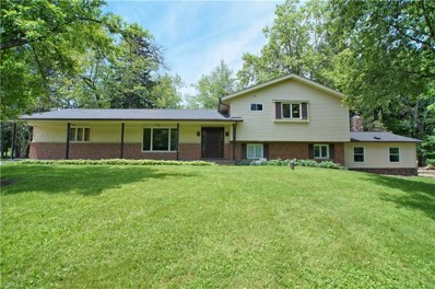 18438 Thorpe Road, Chagrin Falls, OH 44023 - #: 4088108