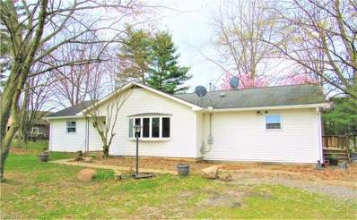 5023 State Route 43, Kent, OH 44240 - #: 4088226