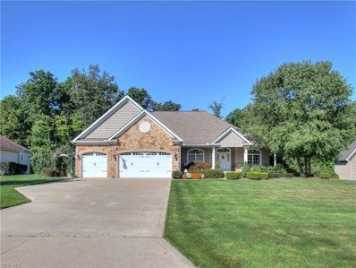 8196 Rainbow Drive, Concord, OH 44077 - #: 4089115