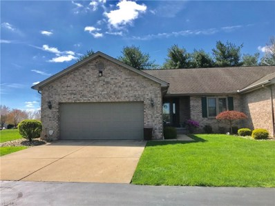 3900 Mercedes Place UNIT 1, Canfield, OH 44406 - #: 4089159