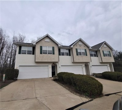 46 Elm Creek Way, Aurora, OH 44202 - #: 4089198