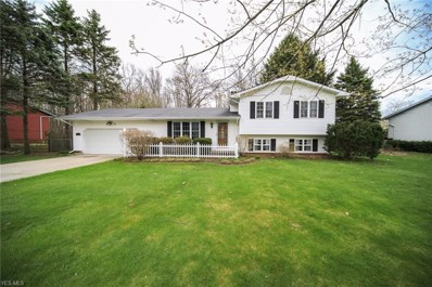 4280 Oregon Street, Perry, OH 44081 - #: 4089291