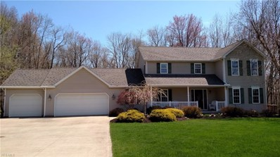 10137 Nelson Court, Wadsworth, OH 44281 - #: 4089398