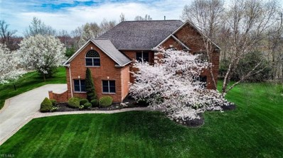 7331 Firewood Circle, Independence, OH 44131 - #: 4089965