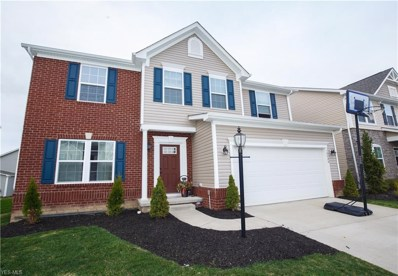 10406 Fox Hollow Circle, Twinsburg, OH 44087 - #: 4090034