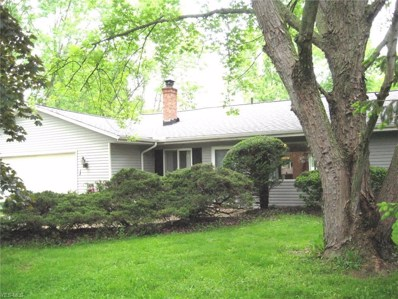 2790 Marks Road, Valley City, OH 44280 - #: 4090035