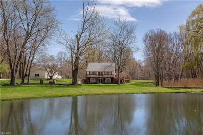 2599 Townline Road, Madison, OH 44057 - #: 4090967