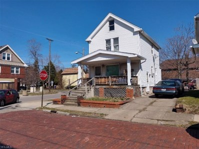 1175 E 173rd Street, Cleveland, OH 44119 - #: 4091006