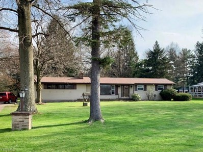4151 Burgett Road, Canfield, OH 44406 - #: 4091033