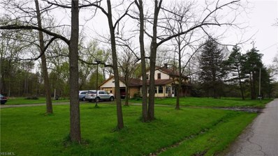 22645 N Benton West Road, Smith, OH 44601 - #: 4091119