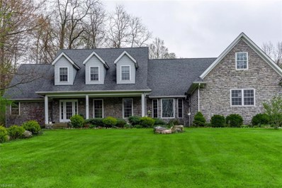 6209 Painesville Ravenna Road, Concord, OH 44077 - #: 4091244