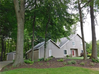 4160 Aldawood Hills Drive, Akron, OH 44319 - #: 4091581