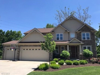 7045 Twin Creeks Court, Independence, OH 44131 - #: 4091647