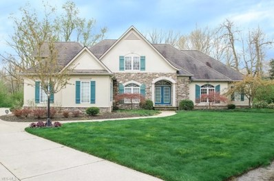 60 Winding River Trl, Bentleyville, OH 44022 - #: 4091998