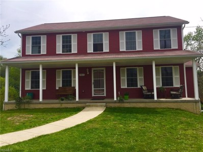 48813 Bloomfield, East Liverpool, OH 43920 - #: 4092208