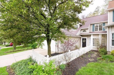 738 Winding Way, Akron, OH 44313 - #: 4092572