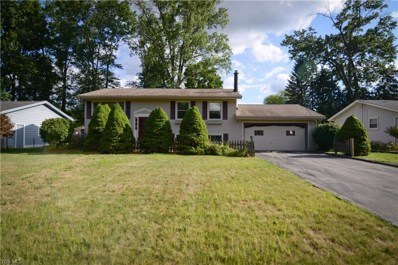 3841 Nottingham Avenue, Youngstown, OH 44511 - #: 4092588