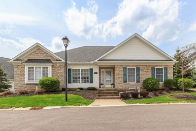 46 Gullybrook Lane, Willoughby, OH 44094 - #: 4093021