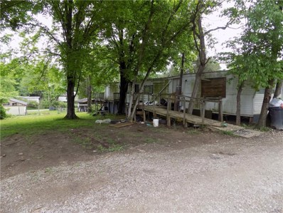 48 West Cabana Way, Elizabeth, WV 26143 - #: 4093135