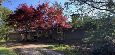 3615 Ira Road, Akron, OH 44333 - #: 4093180