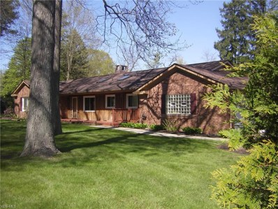 7231 Chillicothe Rd, Mentor, OH 44060 - #: 4093188