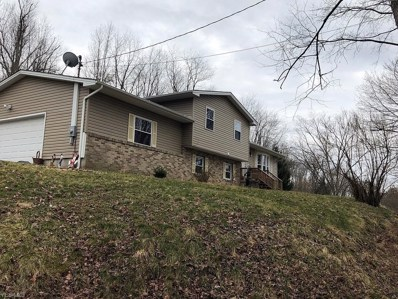45595 Y & O Road, East Liverpool, OH 43920 - #: 4093390