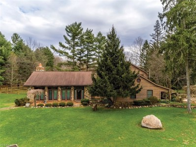 8123 Dines Road, Novelty, OH 44072 - #: 4093512