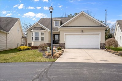 6832 Twin Oaks Court, Canfield, OH 44406 - #: 4093892