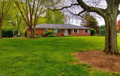 3594 Triway Lane, Wooster, OH 44691 - #: 4094065
