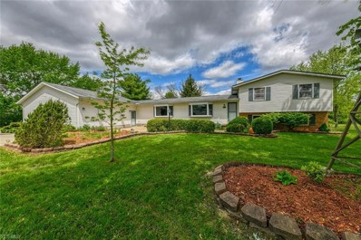 10038 Page Road, Streetsboro, OH 44241 - #: 4094099