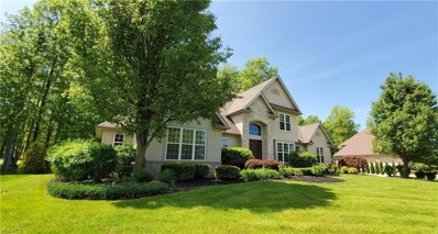 7584 Hunting Lake Drive, Concord, OH 44077 - #: 4094151