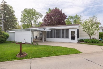 11 Ash Drive, Olmsted Township, OH 44138 - #: 4094235