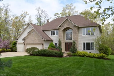 7010 Woodduck Court, Solon, OH 44139 - #: 4094243