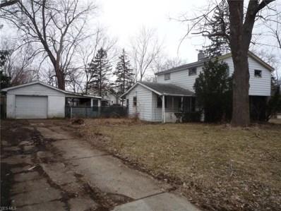 10338 Electric Blvd, Northfield, OH 44067 - MLS#: 4094444