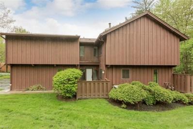 791 Geddes Bluff, Sagamore Hills, OH 44067 - #: 4094465
