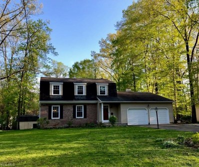 251 Chapel Lane, Canfield, OH 44406 - #: 4094606
