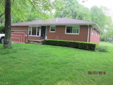 51 Mill Trace Road, Youngstown, OH 44511 - #: 4094846