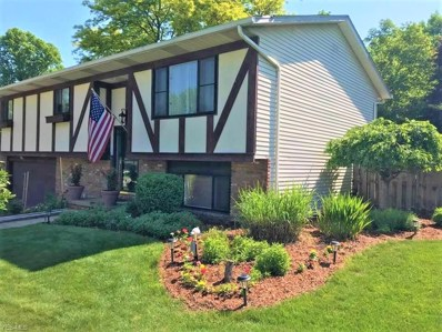511 Catlin Drive, Richmond Heights, OH 44143 - #: 4094849