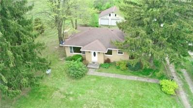 7853 Ridge Rd, Wadsworth, OH 44281 - #: 4094942