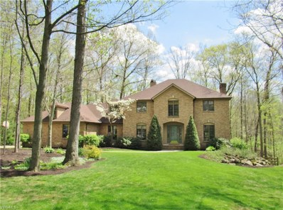 3352 Hardwood Hollow Road, Medina, OH 44256 - #: 4095050