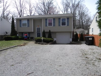 6242 Selkirk Drive, Madison, OH 44057 - #: 4095113