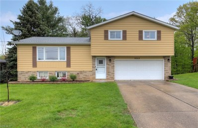 9223 Lincoln Dr, Northfield Village, OH 44067 - #: 4095569