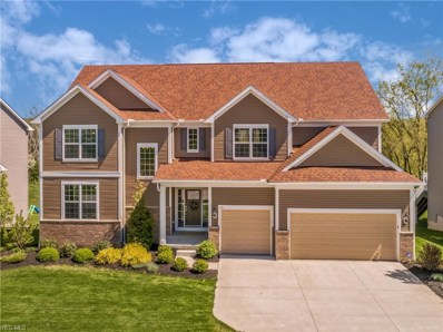 21 Harvester Drive, Copley, OH 44321 - #: 4095631