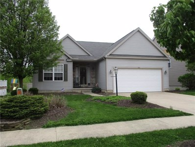 876 Queens Gate Way, Wadsworth, OH 44281 - #: 4095646
