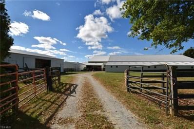 10510 Angling Road, Wakeman, OH 44889 - #: 4095835