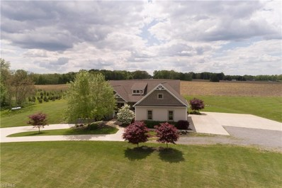 2325 Camelot Drive, Columbiana, OH 44408 - #: 4095895