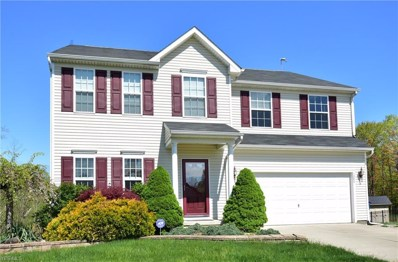 1204 Meadowbrook Ct, Amherst, OH 44001 - #: 4096090