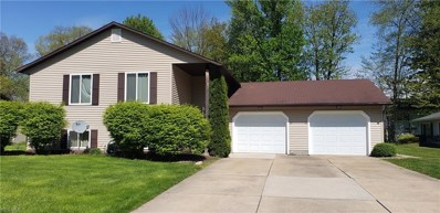 10 Williamsburg Court, Madison, OH 44057 - #: 4096130